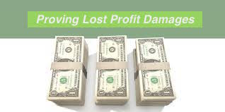 proving defending lost profit damages by david adelstein